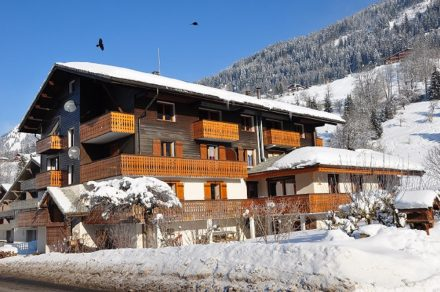 Apartment in chalet L'Echo de la Corne n°4 - 32m² - 1 bedroom - Cruz Lionel