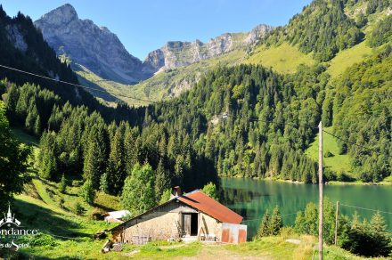 Trekking from the Lake of Plagne to the Lac of Tavaneuse (loop)