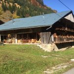 Apartment in chalet - Abondance